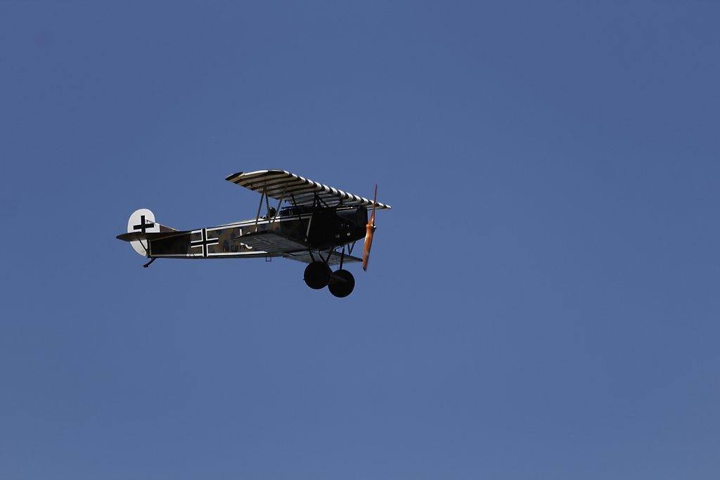 Fokker-DVII.jpg